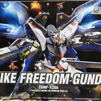 HG 1/144 Seed Series Strike Freedom Gundam (BANDAI)