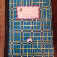 Buku Folio Bergaris 100 Lbr / Buku Akuntansi Bergaris