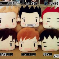 Boneka Bantal 2PM K-Pop Plushie