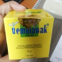 Cream Temulawak Original (Day & Night)