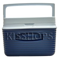 Cooler Box Rubbermaid 4,7 Liter