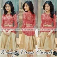 Model Baju Kebaya | Kebaya Modern|Kebaya dress|setelan Kebaya L-389