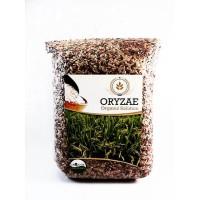 2kg Beras Mix Organik (merah,hitam,coklat)