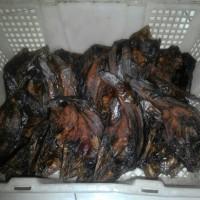 Ikan lele salai/asap kwalitas baik uk. kecil, isi -+ 40 ekor/800 gr.