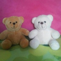 teddy bear/boneka beruang/souvenir ultah/wedding