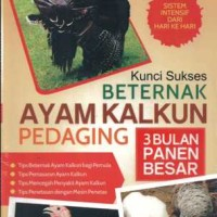 harga Kunci Sukses Beternak Ayam Kalkun Pedaging H968 Tokopedia.com