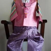 Baju Hanbok - korea Boy pink purple