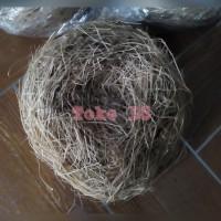 Sarang Telur Burung Lovebird / Kenari / Murai