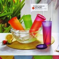 Giant Tumbler Tupperware Katalog Mei-Nov 2015