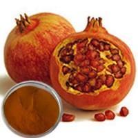 Jual Delima / pomegranate powder Murah