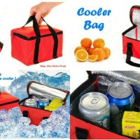 Cooler Bag (Bonus 2pcs Jelly Ice Pengganti Es Batu)
