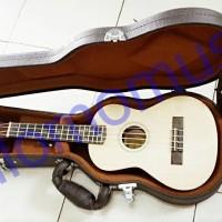 Hardcase ukulele concert dark brown