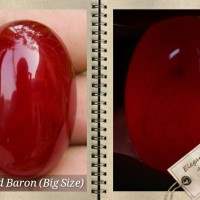 harga BATU NATURAL RED BARON / AKIK DARAH ( BIG SIZE ) Tokopedia.com