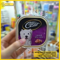 Dog Food Basah Cesar Lamb 100 Gram