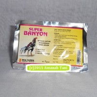 Obat mandi ayam aduan SUPER BANYON