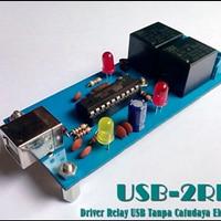 Modul USB 2 Relay Training Kit