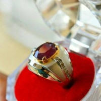 harga Ruby Blood Pigeon Premium + Silver Ring - Ujang S Tokopedia.com