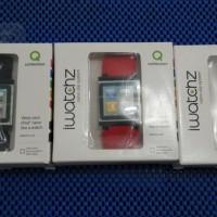 iwatchz Classic for ipod nano