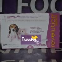 harga Obat Kucing Anjing Revolution Pink For Dog & Cat Junior <5lbs Tokopedia.com