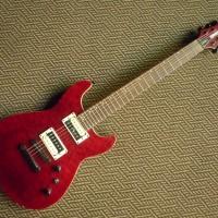Guitar Fernandes Dragonfly Standard