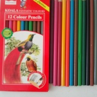 1 Pak Pensil Warna (Isi 12 Warna)