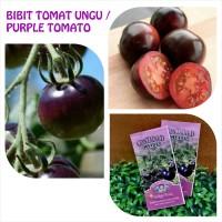 Jual BIBIT / BENIH TOMAT UNGU - INDIGO ROSE PURPLE COLOURED Murah