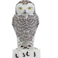 snowy owl female papercraft