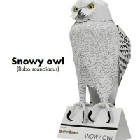 snowy owl male papercraft
