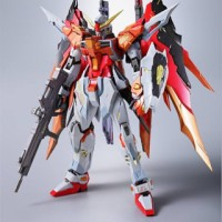 Metal Build Destiny Gundam [Heine Custom] Tamashii Nation Expo Limited