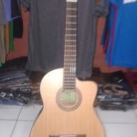 Gitar Allegro Yahamah c-390