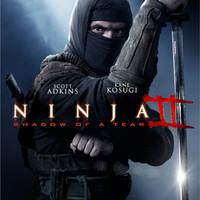 DVD NINJA 2 (2015)