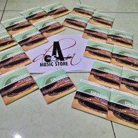 Senar D'addario akustik 012 packing (EZ920 New Cover)