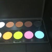 lt pro palette eyeshadow matt