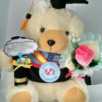 Boneka Wisuda Universitas BSI + Bucket Bunga