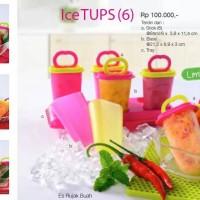 Tupperware Ice Tups (6)