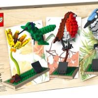 LEGO # 21301 LEGO IDEAS_BRIDS