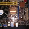 mainboard asus dan msi g31