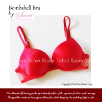 Secret Possessions Bombshell Bra size 34A