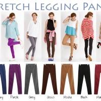 Stretch Legging Pants (Standard Size)