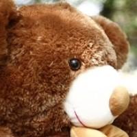 Boneka Beruang Teddy Bear Besar Cokelat Lucu