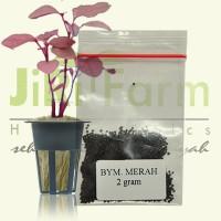 Benih/Bibit Bayam Merah 2gr (500 biji) hidroponik/tradisional