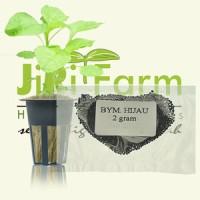 Benih/Bibit Bayam Hijau 2gr (700 biji) hidroponik/tradisional