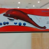 Alat Pijat / Massager Dolphin 606B-6 TKS, Takeshi