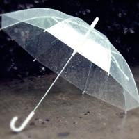 Payung Transparan