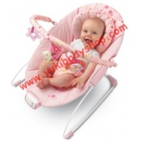 Bright Starts Pretty In Pink Butterfly Blossoms Cradling Bouncer