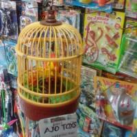 Burung kecil Sensor Suara Free batre