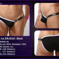 Seeinner Ice Silk Brief M9901