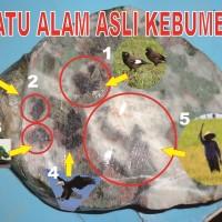 Batu unik asli Kebumen motif doreng dengan gambar burung, orang, dll