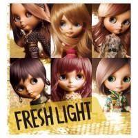 Schwarzkopf Freshlight Hair Color / Pewarna Rambut Fresh Light