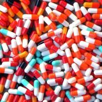 Kapsul Kosong untuk media Konsumsi Obat/Semut Jepang